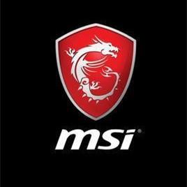 MSI微星N9600GSO-MD512显卡驱动